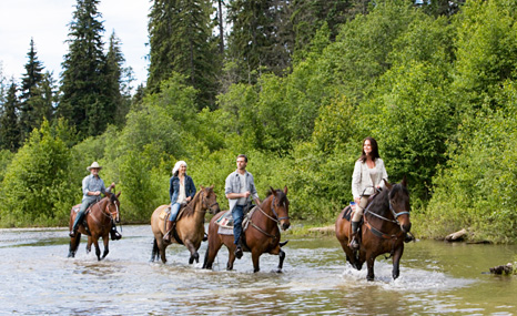 50%OFF 1300 Trail Rides deals, reviews, coupons,discounts
